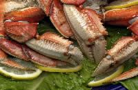 Florida seafood,Pensacola seafood,online seafood market,shop