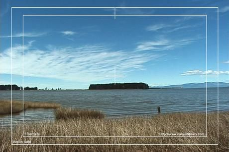 Royalty Free Stock Footage: New Zealand: NL00566