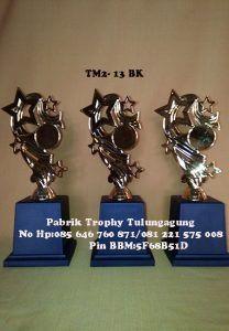 TM2-13BK