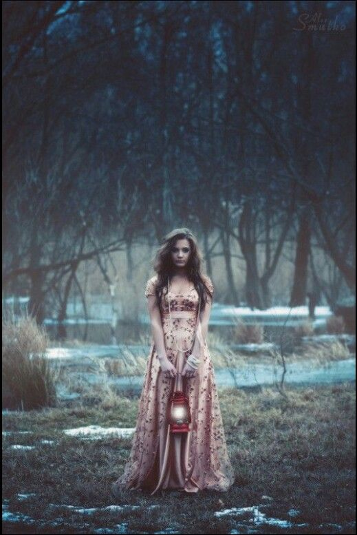 Ведьма из Диких Земель