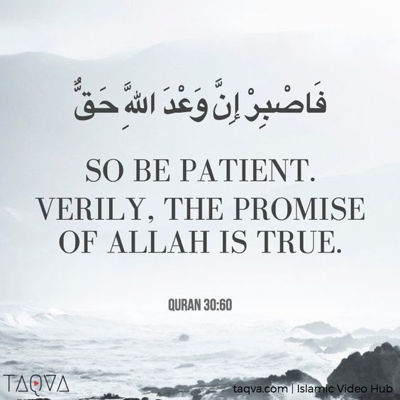 """So be patient. Verily, the promise of #Allah is true."" #Quran 30:60 #Islam…"