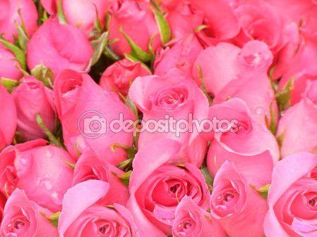 Beauty Colour from Nature Element — Stock Photo © photostocknatonny #56415671 http://depositphotos.com?ref=3874931