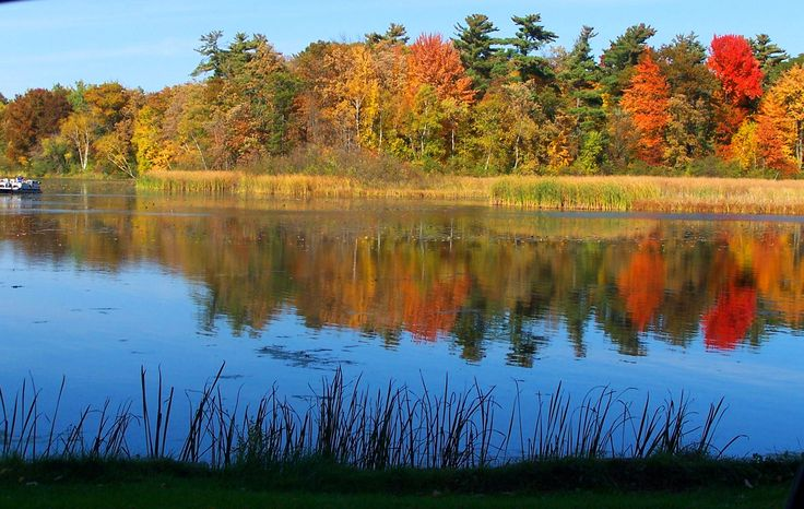 1000 Images About Wisconsin Fall Color On Pinterest