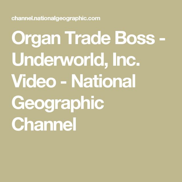 Organ Trade Boss - Underworld, Inc. Video - National Geographic Channel