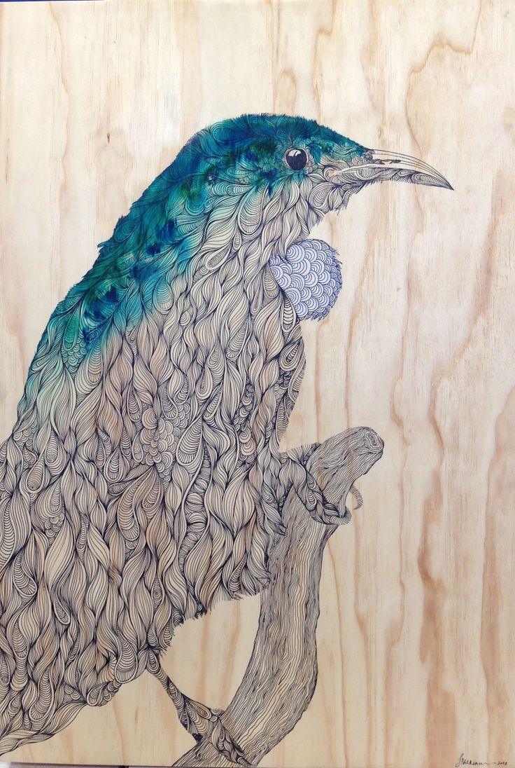 """Organic Tui"", ink and dye on plywood, by Joe McMenamin"