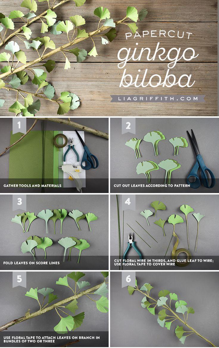 Download a FREE Pattern for a Paper Ginkgo Biloba Branch