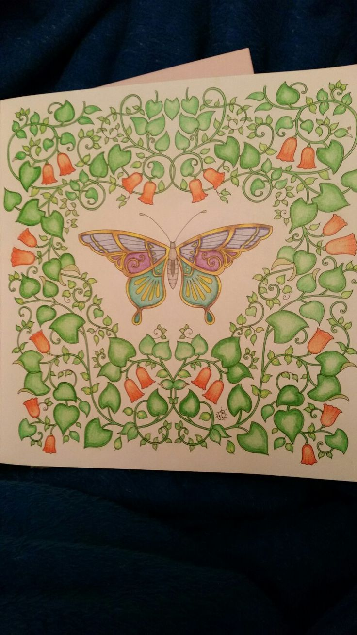 Art therapy coloring book and pencils - Johanna Basford Magical Jungle Polychromos Pencils Carol D Colouring Pencilsadult Coloringcoloring Booksjohanna Basfordpencil Artart