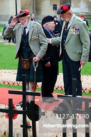 War veterans at Field of Remembrance, Westminster Abbey, London