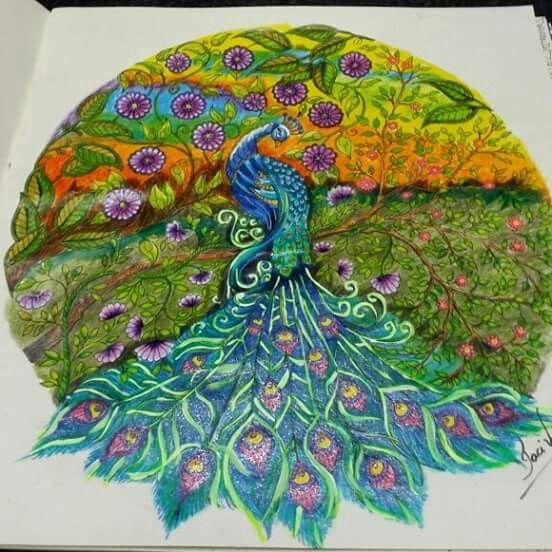 peacock secret garden pavo jardim secreto johanna basford secret garden coloring bookpeacock - Peacock Coloring Book
