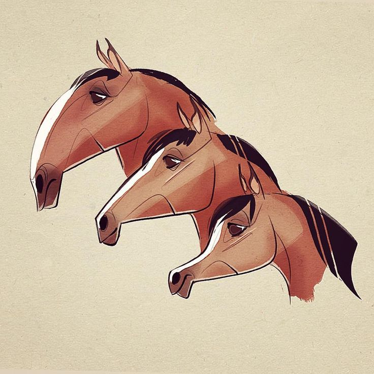 Some head diversity! Planning out some tutorial stuff! Thanks for the feedback! #horse #horsedrawing