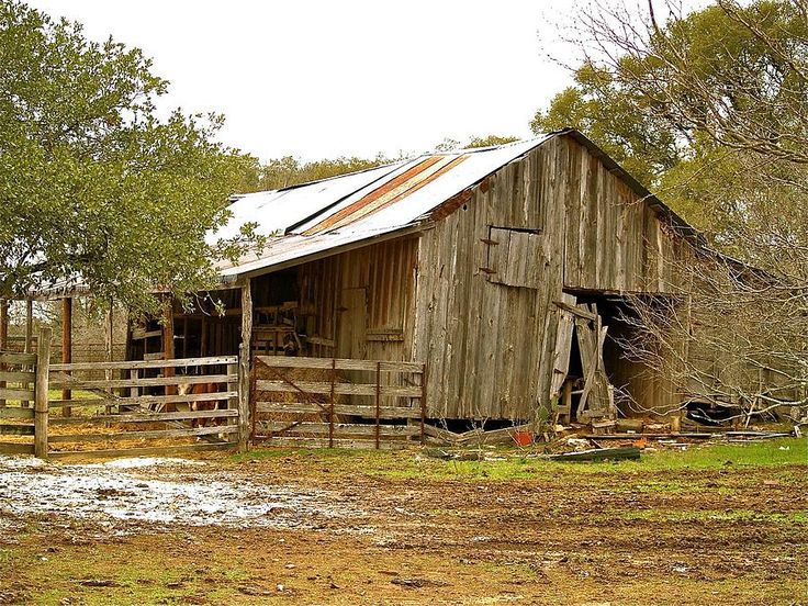 Old Texas Barns for Sale | ... Buscho - The Forgotten Barn Fine Art Prints and Posters for Sale