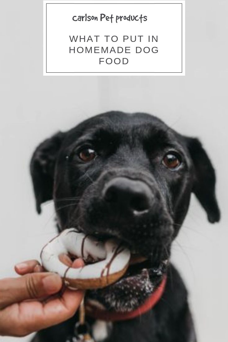 What To Put In Homemade Dog Food Dog Food Recipes Homemade Dog