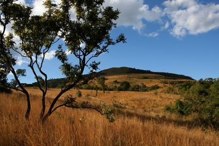 The imposing Mount Gorongosa massif, which overlooks and nourishes Gorongosa National Park in Mozambique.  Photo by Jean-Paul Vermeulen.