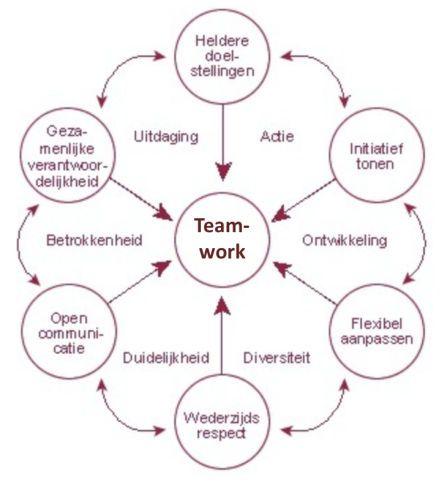 Succesvol teamwerk volgens Martin Euwema & Jos van der Waals