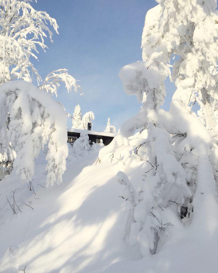 Fageråsen, Trysil Jan 2016