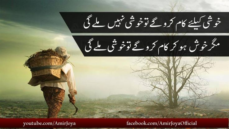Urdu quotes on life| motivational quotes| urdu quotes on education