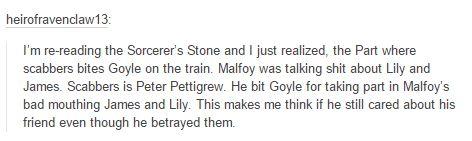 the marauders - peter pettigrew - scabbers