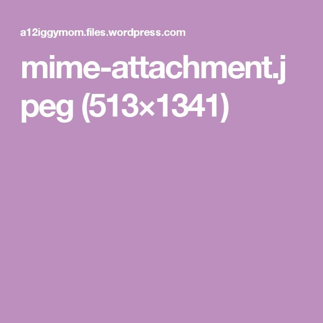 mime-attachment.jpeg (513×1341)