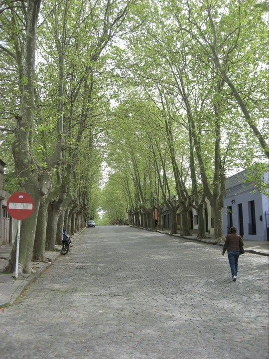 Colonia Uruguay