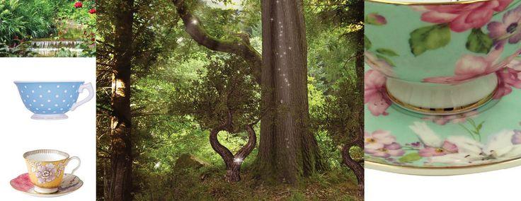 Theetijd in magisch bos