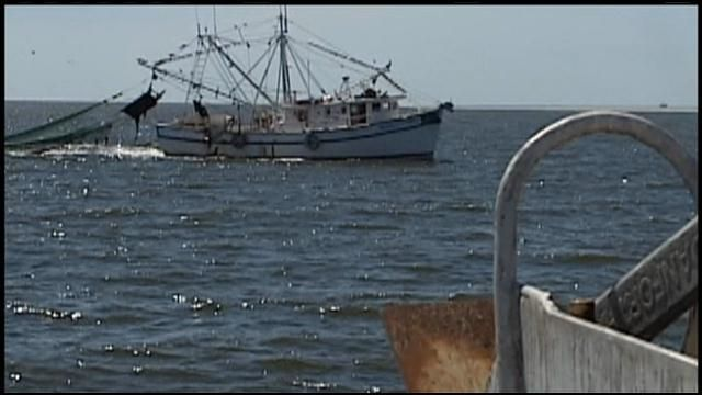 Interview with Executive Chef Tim Peters: With poor shrimping season, local shrimp more expensive to purchase | WIS News 10 | July 24, 2013
