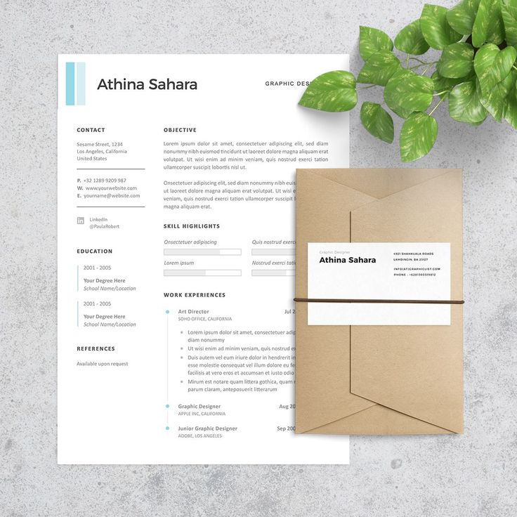 Clean Resume and Professional Resume