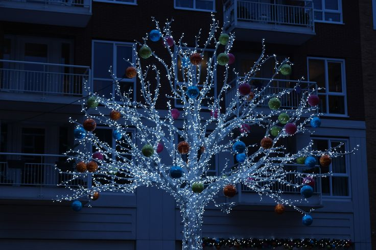 Week 50: Kerstsfeer op het Oosterheemplein
