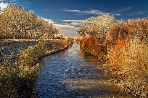 Canal at Bosque del Apache |