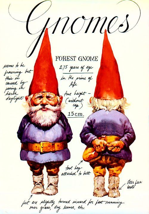 Gnomes by Will Huygen & illustrated by Rien Poortvliet. The book that inspired by fascination with gnomes.