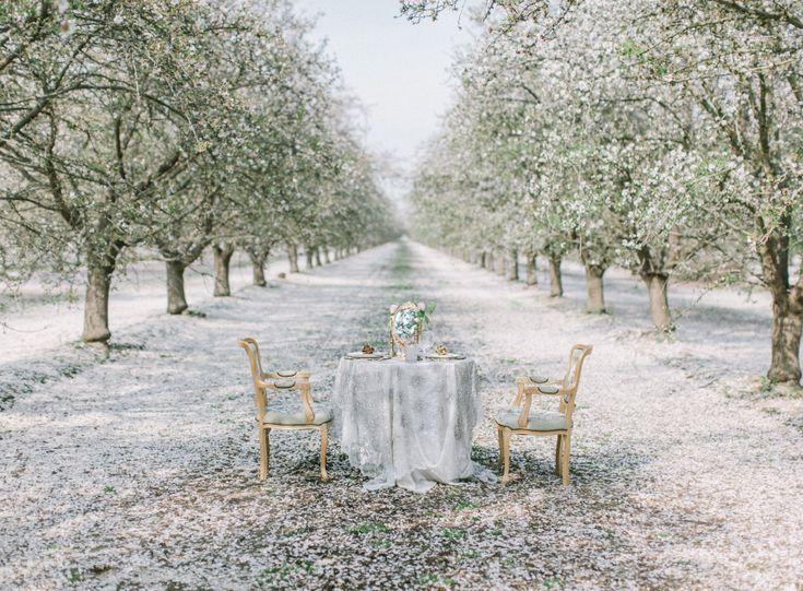 Kevään rauhallisia värejä. Ulos voi viedä huonekaluja ja muutakin väreihin sopivaa rekvisiittaa. Suomessa tälläisiä kujia löytyy erityisesti ainakin koivuversioina.