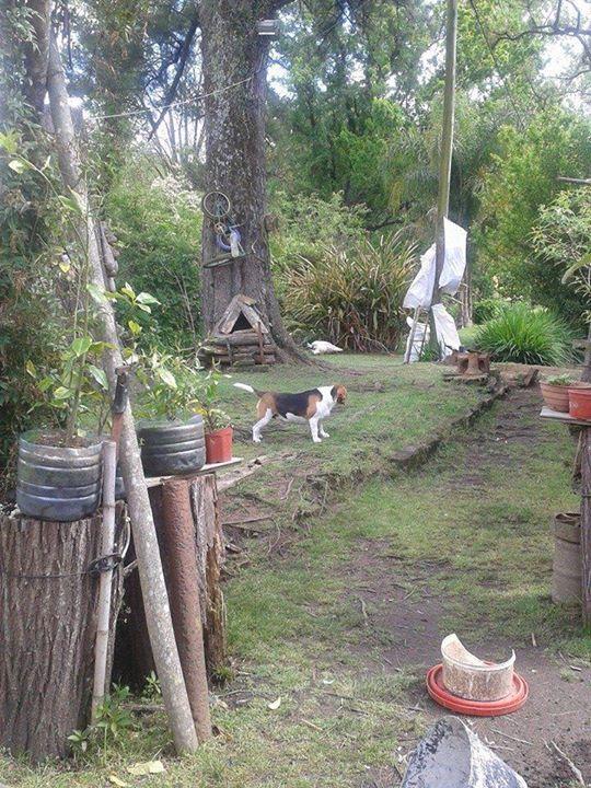 Maria Celia Gonzales: una guardiana en la isla