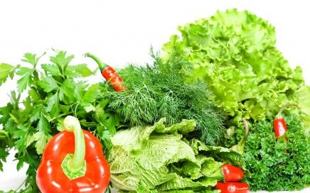 You might have heard and read about how important it's to consume green food. But, do you know why you need to eat them? Green veggies are enriched in vitamins, minerals, and iron. Green superfoods are incredibly rich in chlorophyll, the pigment that provides plants their green color.