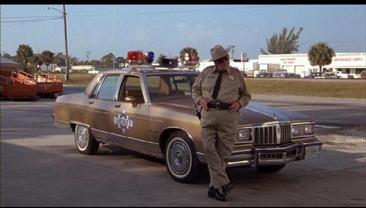 Smokey And The Bandit  Police Car
