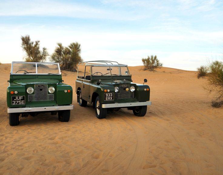 210 best desert safari dubai images on pinterest desert. Black Bedroom Furniture Sets. Home Design Ideas