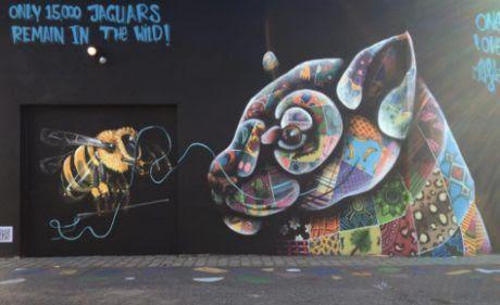 zhannadesignfromart: Street Artist Who Raises Awareness for Endangered ...