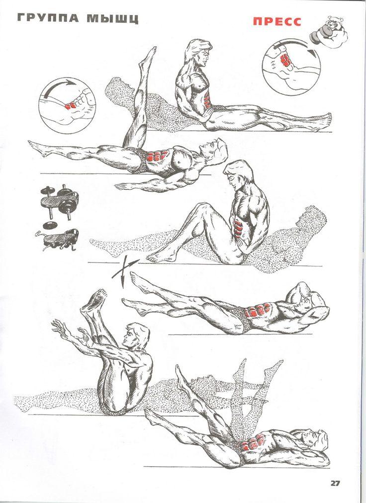 упражнения для рук и пресса в картинках известный