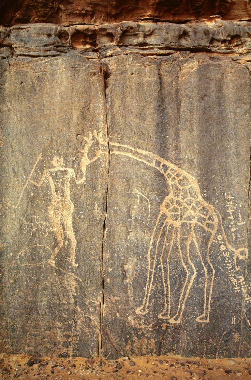the worlds largest rock art petroglyph dabous giraffe - 736×1112