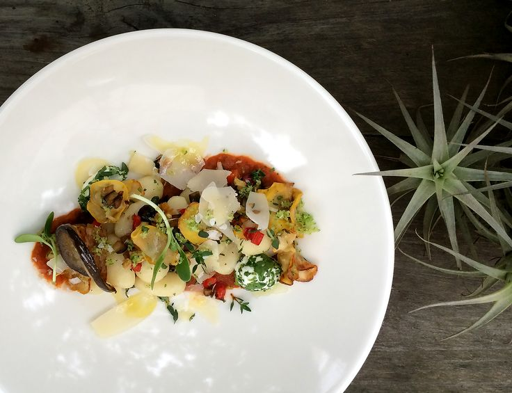 The perfect mix: Ratatouille ragù, gnocchi, Parmesan crisps, herbed goats cheese and patty pans.