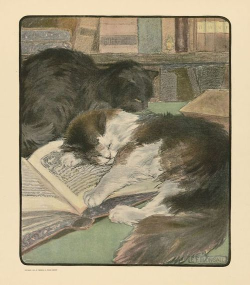 1903Elisabeth Bonsall (1859-1930) ~ The Book of the Cat