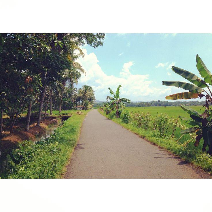 Vers la Green Valley, Pangandaran, Java, Indonésie.