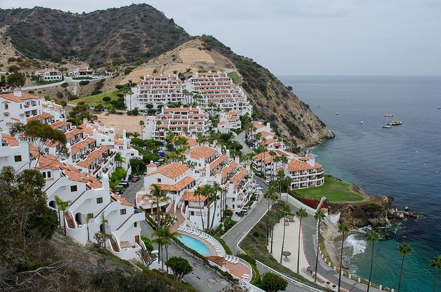 Catalina Island, California. This place was very charming. Highly recommend an overnight trip if staying in southern CA.