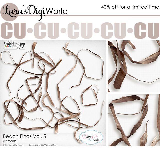 Lara´s Digi World - Digital Scrapbooking Designs: New Beach Finds - Seaweeds #larasdigiworld #autumn #fall #beach