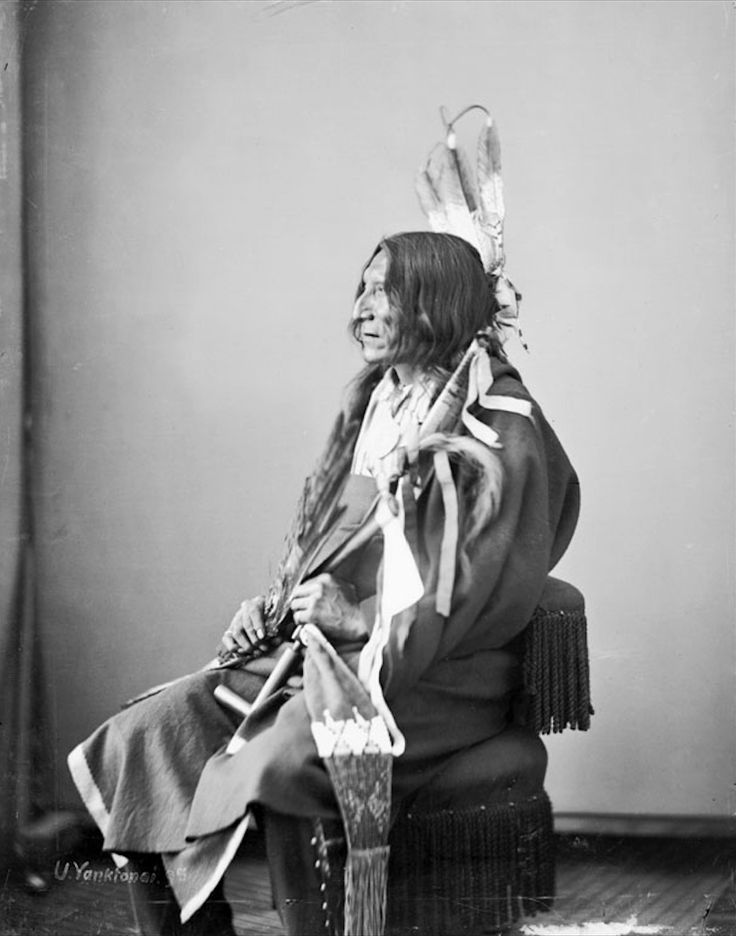 Portrait (Profile) of Ishta Shapa or Ish-Tah-Sa-Pah or Ista-Sapa (Black Eye), Dakota Yanktonai, in Native Dress with Peace Medal and Holding Pipe, Fan, Pipe-tomahawk and Bag - Gardner - 1872