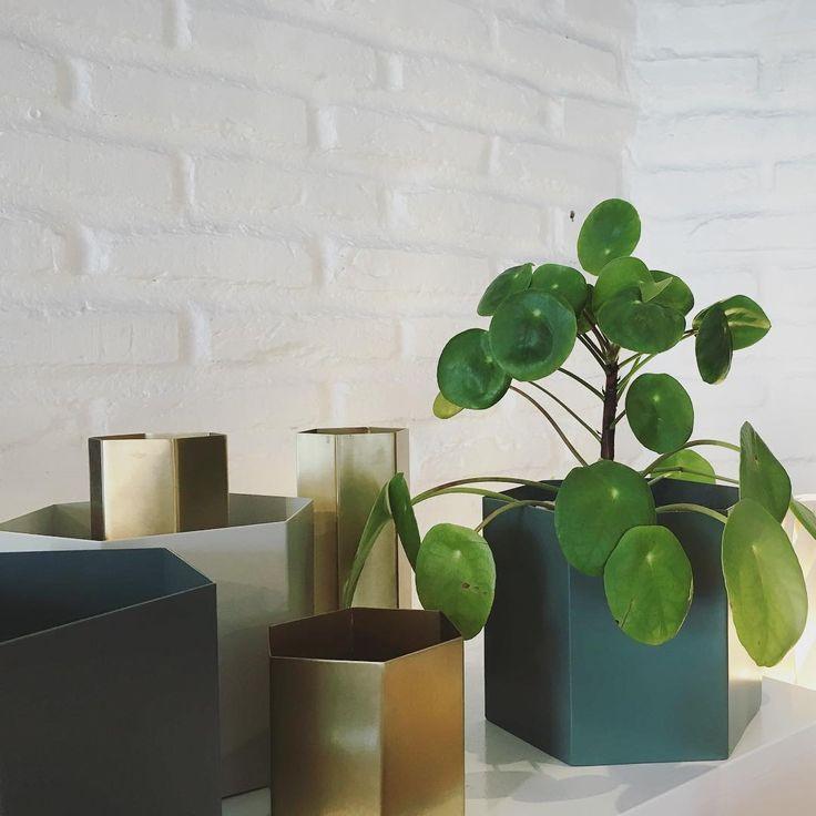 ferm LIVING Hexagon Pots and vases: http://www.fermliving.com/webshop/shop/green-living.aspx