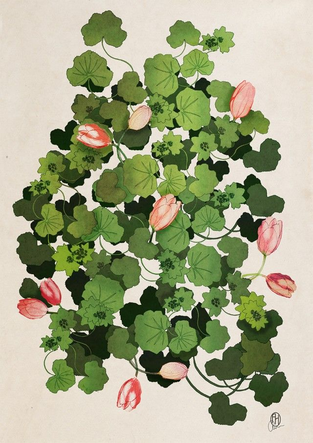 Lady's Mantle & Tulips II, an amazing poster by Anna Handell! It's even more beautiful in real life! #nordicdesigncollective #annahandell #annhandellmontage #ladysmantle #tulip #tulips #flower #pink #green #poster #art #wallart #print #swedishdesign #spring #springflowers #pastel