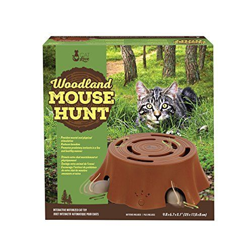 Cat Love Woodland Mouse Hunt Interactive Toy *** Want additional info? Click on the image. #interactivecattoyslove