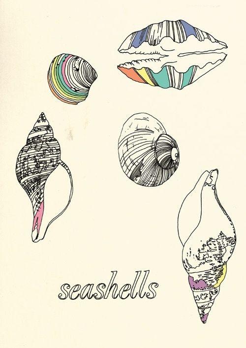 shell tattoo - Google Search