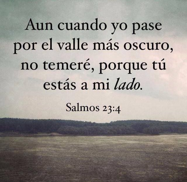 Versiculos Biblicos De Promesas De Dios: Salmos 23:4
