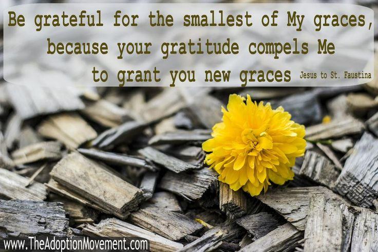 APPRECIATE LITTLE GRACES! RETWEET IF YOU DO! Do You Value Grace? http://www.thefourmen.info/2/post/2011/12/the-eighteenth-day-of-the-four-men-boot-camp.html …