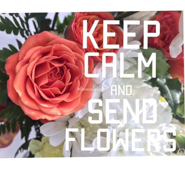 Don't get stressed out about sending a gift, keep calm and send flowers! . . . #tognoligifts #ftd #gifts #flowers #giftbaskets #birthday #anniversary #autum #fall #orange #yellow #roses #carnations #alstromeria #september #maryland #thinkingofyou #sympathy #happybirthday #oasis #relax #keepcalm #sendflowers #photography #igers